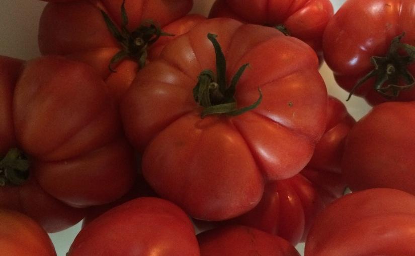 Weltbeste Tomatensauce oder auch die Lotte ist 'neflotte
