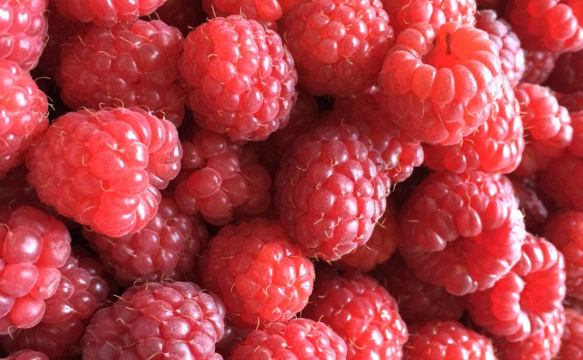 Raspberry-Fields Forever…oder so