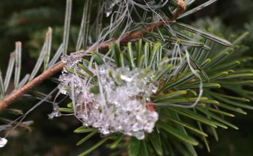 Frohe Weihnachten – God Jul – Merry Christmas – Joyeux Noël – BuonNatale