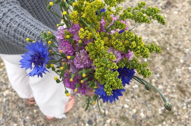 Auf Pflanzen-Pirsch in der dänischen Heidelandschaft – Und plötzlich wird der Blick ganzweit